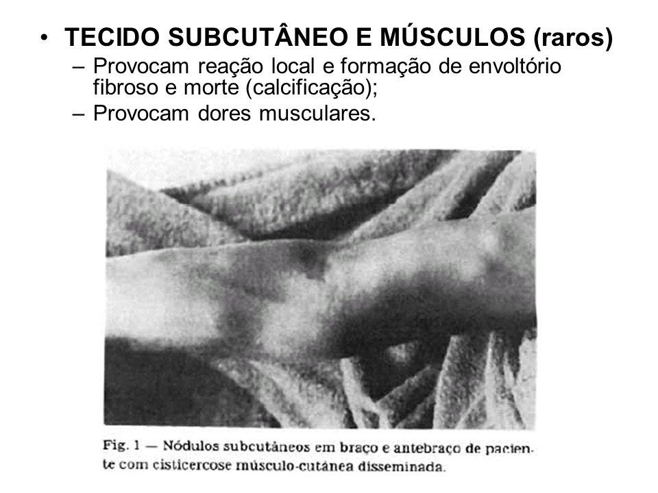 TECIDO SUBCUTÂNEO E MÚSCULOS (raros) –Provocam reação local e formação de envoltório fibroso e morte (calcificação); –Provocam dores musculares.