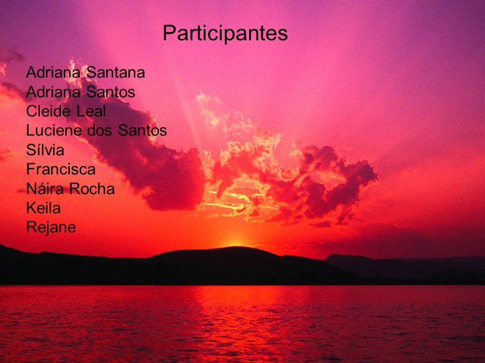 Participantes Adriana Santana Adriana Santos Cleide Leal Luciene dos Santos Sílvia Francisca Náira Rocha Keila Rejane
