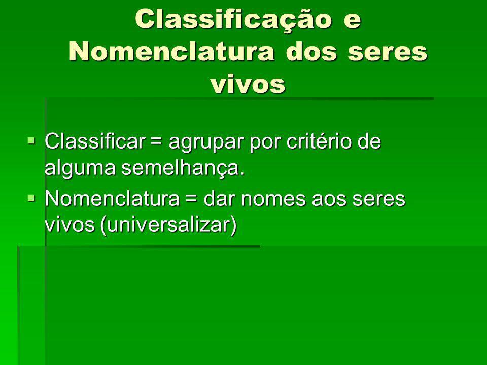 Classificação e Nomenclatura dos seres vivos Classificar = agrupar por critério de alguma semelhança. Classificar = agrupar por critério de alguma sem