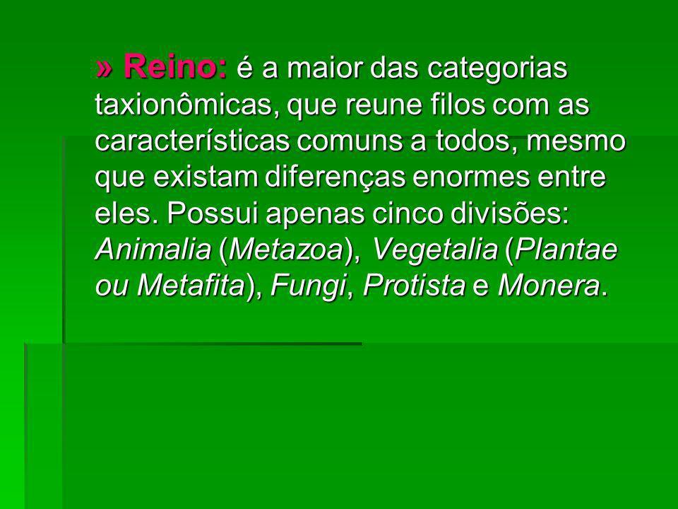 » Reino: é a maior das categorias taxionômicas, que reune filos com as características comuns a todos, mesmo que existam diferenças enormes entre eles