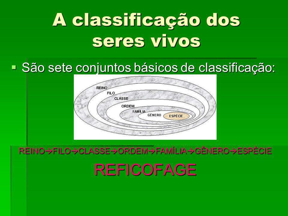 A classificação dos seres vivos São sete conjuntos básicos de classificação: São sete conjuntos básicos de classificação: REINO FILO CLASSE ORDEM FAMÍ