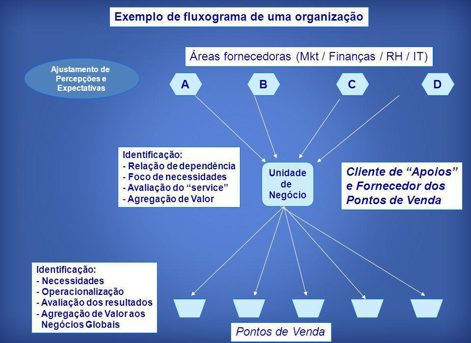 Unidade de Negócio ABCD Áreas fornecedoras (Mkt / Finanças / RH / IT) Identificação: - Relação de dependência - Foco de necessidades - Avaliação do se