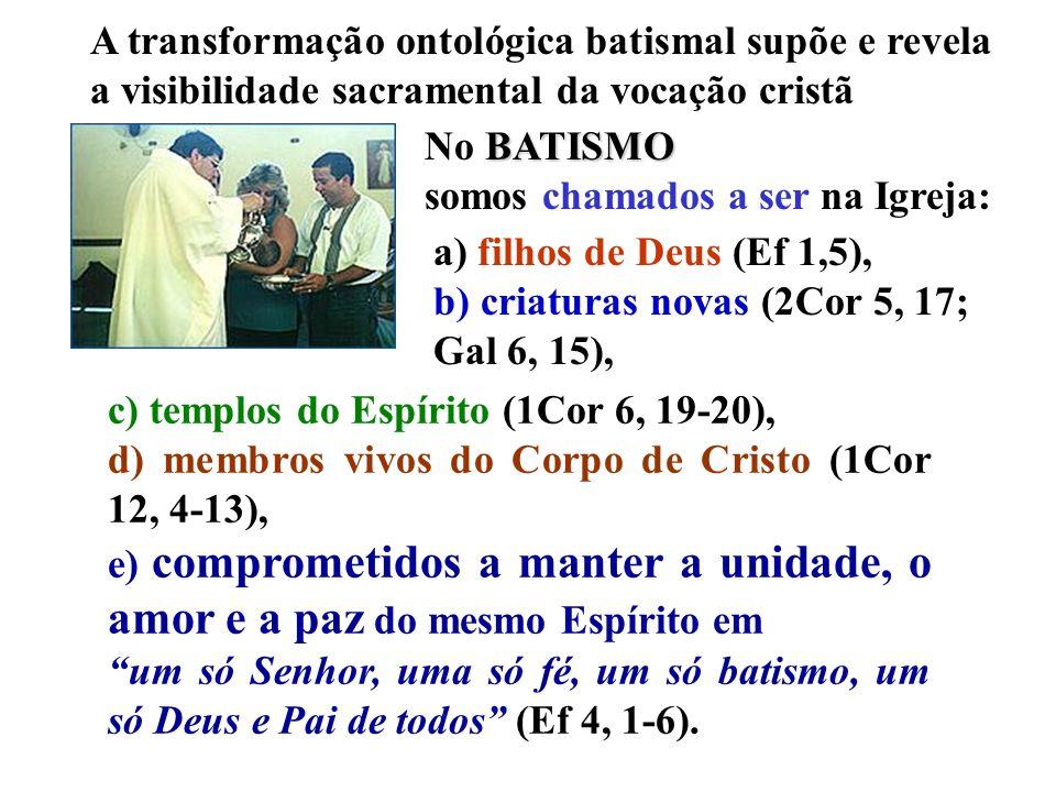 Presbíteros Diocesanos Religiosos/as Presbíteros- religiosos Ligos/as seculares Leigos/as consagrados Leigos/a s Leigo, Presbítero, Religioso C.