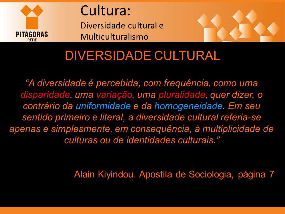 Cultura: Diversidade cultural e Multiculturalismo DIVERSIDADE CULTURAL A diversidade é percebida, com frequência, como uma disparidade, uma variação,