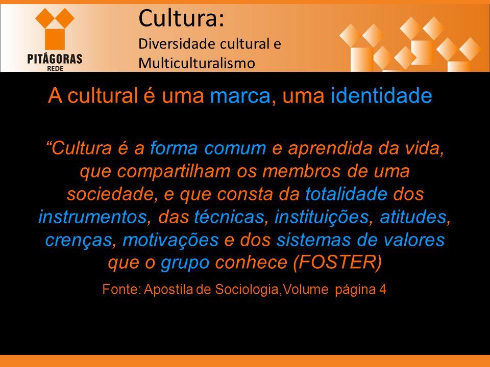 Cultura: Diversidade cultural e Multiculturalismo A cultural é uma marca, uma identidade Cultura é a forma comum e aprendida da vida, que compartilham