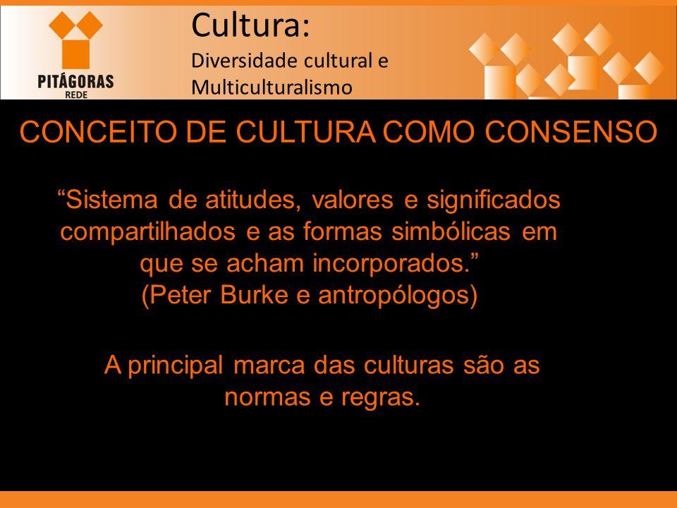 CONCEITO DE CULTURA COMO CONSENSO Sistema de atitudes, valores e significados compartilhados e as formas simbólicas em que se acham incorporados. (Pet