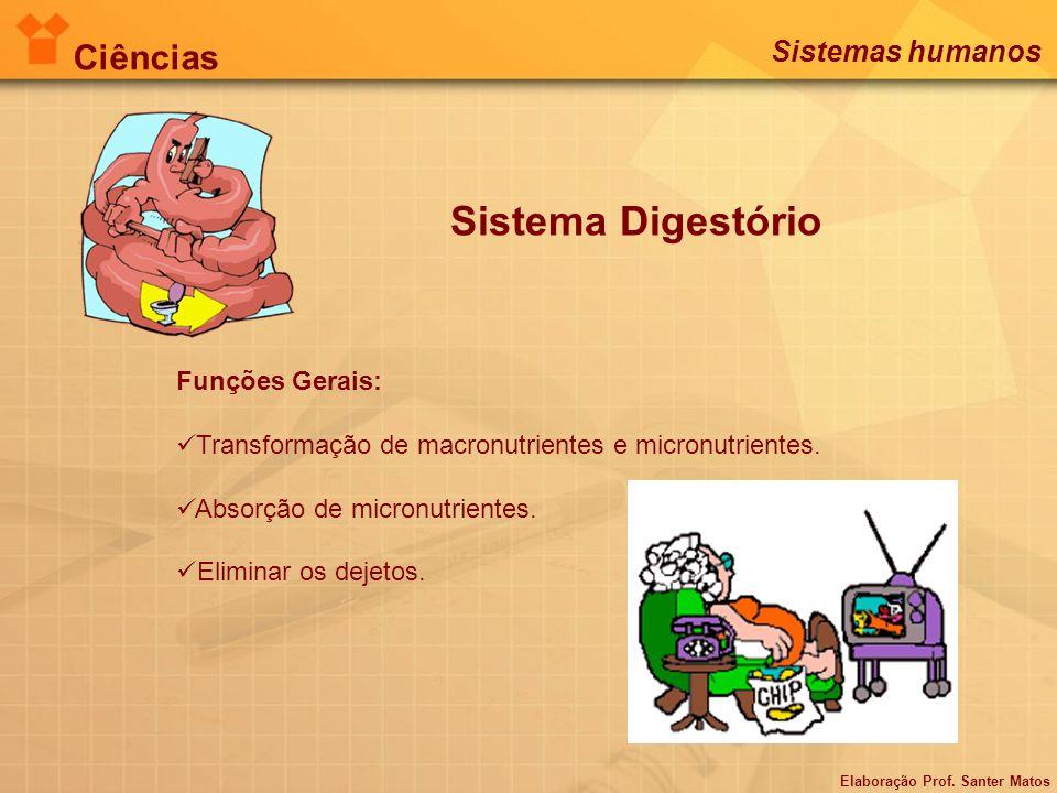 Sistema Digestório Funções Gerais: Transformação de macronutrientes e micronutrientes. Absorção de micronutrientes. Eliminar os dejetos. Elaboração Pr