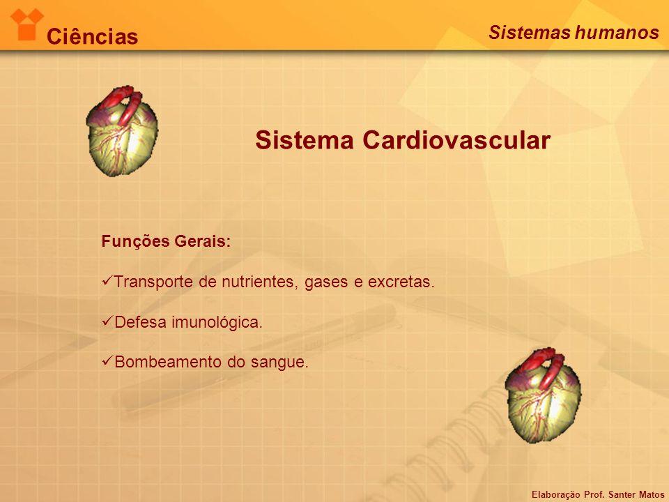 Sistema Cardiovascular Funções Gerais: Transporte de nutrientes, gases e excretas. Defesa imunológica. Bombeamento do sangue. Elaboração Prof. Santer