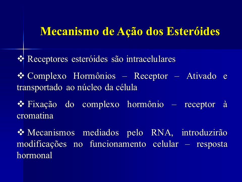 Mecanismo de Ação dos Esteróides Receptores esteróides são intracelulares Receptores esteróides são intracelulares Complexo Hormônios – Receptor – Ati