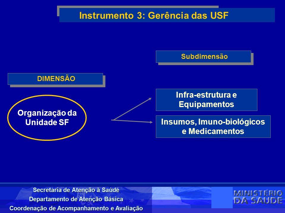 Secretaria de Atenção à Saúde Departamento de Atenção Básica Coordenação de Acompanhamento e Avaliação DIMENSÃO Instrumento 3: Gerência das USF Subdim