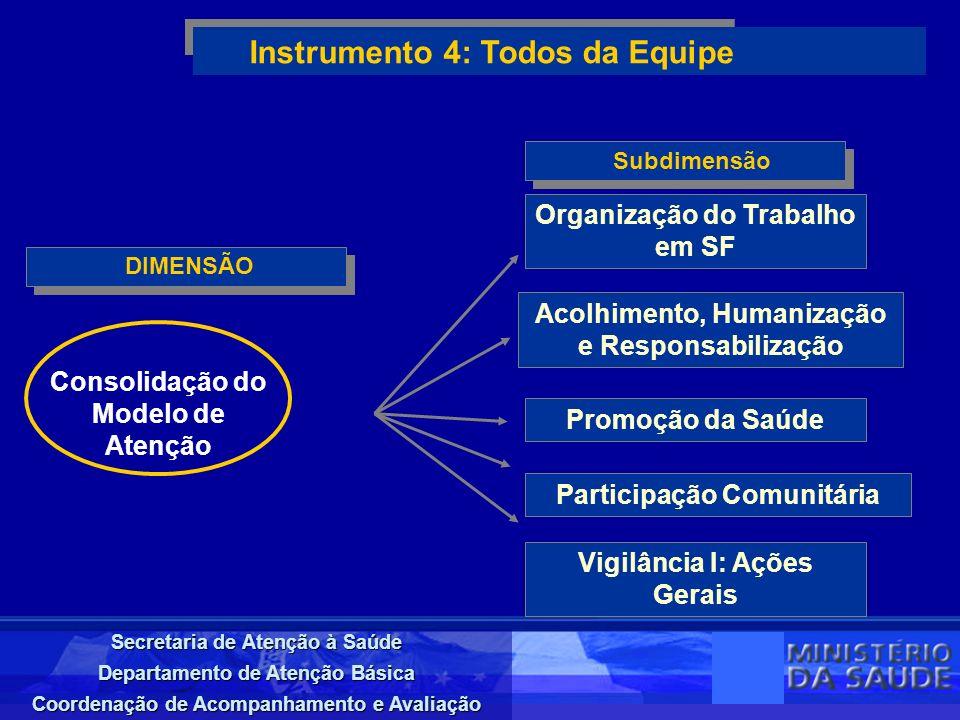 Secretaria de Atenção à Saúde Departamento de Atenção Básica Coordenação de Acompanhamento e Avaliação DIMENSÃO Instrumento 4: Todos da Equipe Subdime