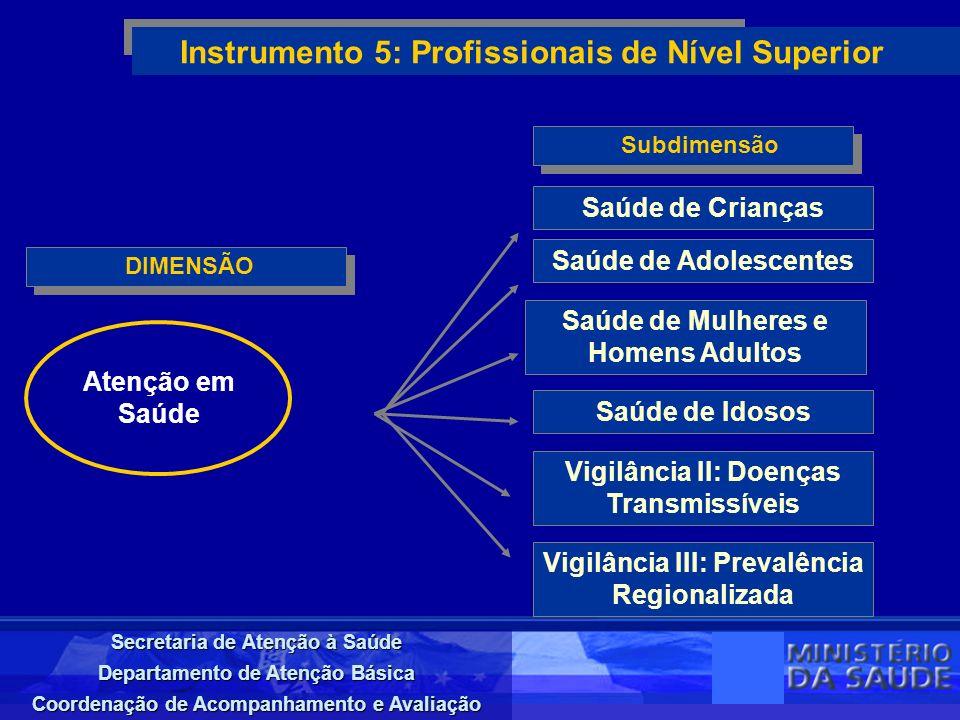 Secretaria de Atenção à Saúde Departamento de Atenção Básica Coordenação de Acompanhamento e Avaliação DIMENSÃO Instrumento 5: Profissionais de Nível