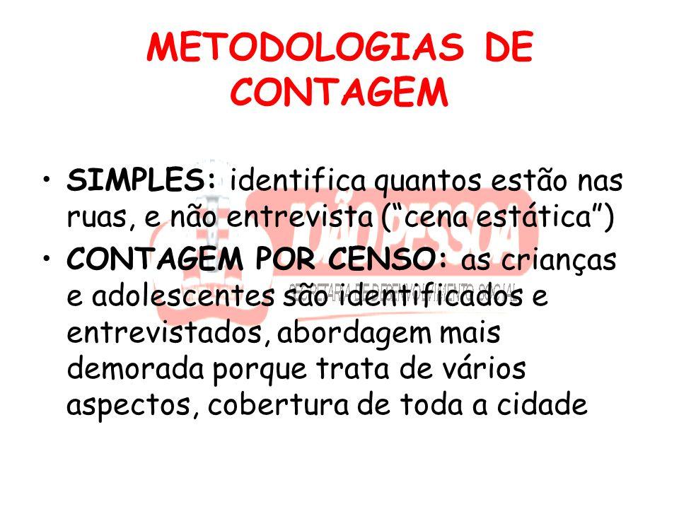 METODOLOGIA MISTA Fizemos um misto de contagem rápida com algumas questões de censo (havia uma demanda: de identificação, origem, comparação entre período cotidiano e atípico).