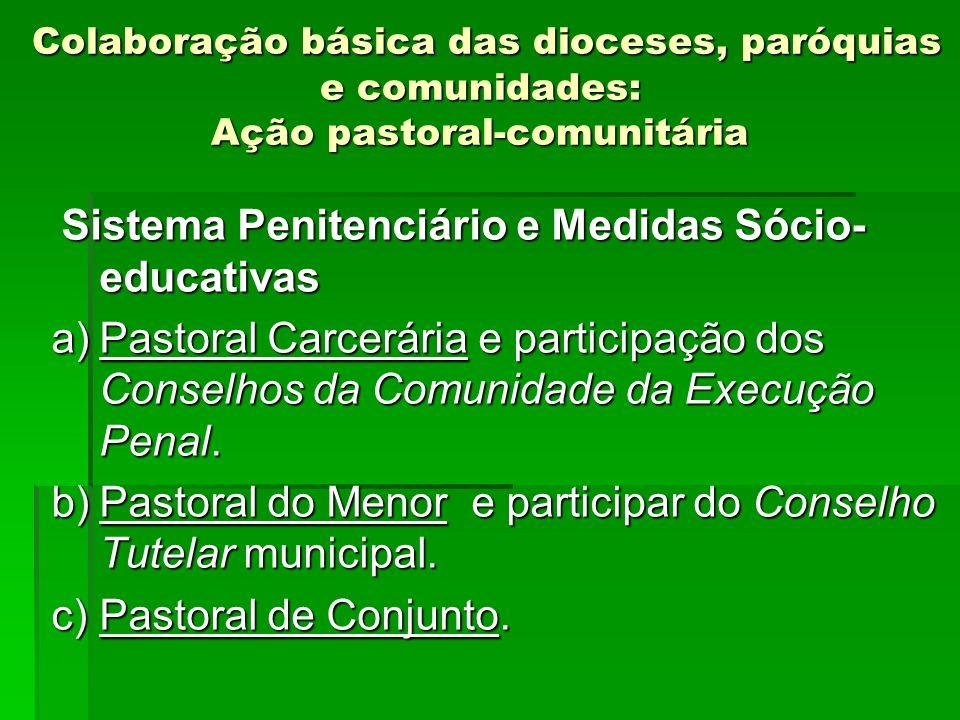 Colaboração básica das dioceses, paróquias e comunidades: Ação pastoral-comunitária Colaboração básica das dioceses, paróquias e comunidades: Ação pas