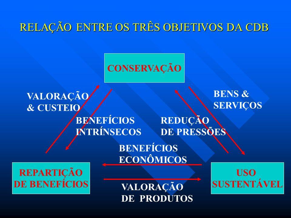 RELAÇÃO ENTRE OS TRÊS OBJETIVOS DA CDB CONSERVAÇÃO REPARTIÇÃO DE BENEFÍCIOS USO SUSTENTÁVEL BENS & SERVIÇOS VALORAÇÃO & CUSTEIO VALORAÇÃO DE PRODUTOS