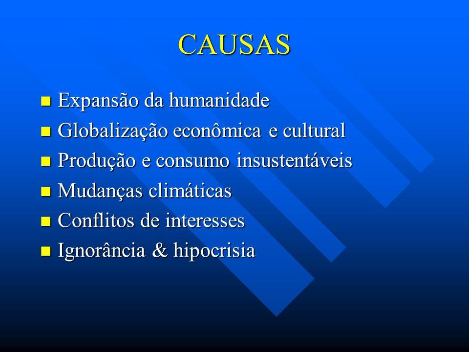 CAUSAS Expansão da humanidade Expansão da humanidade Globalização econômica e cultural Globalização econômica e cultural Produção e consumo insustentá