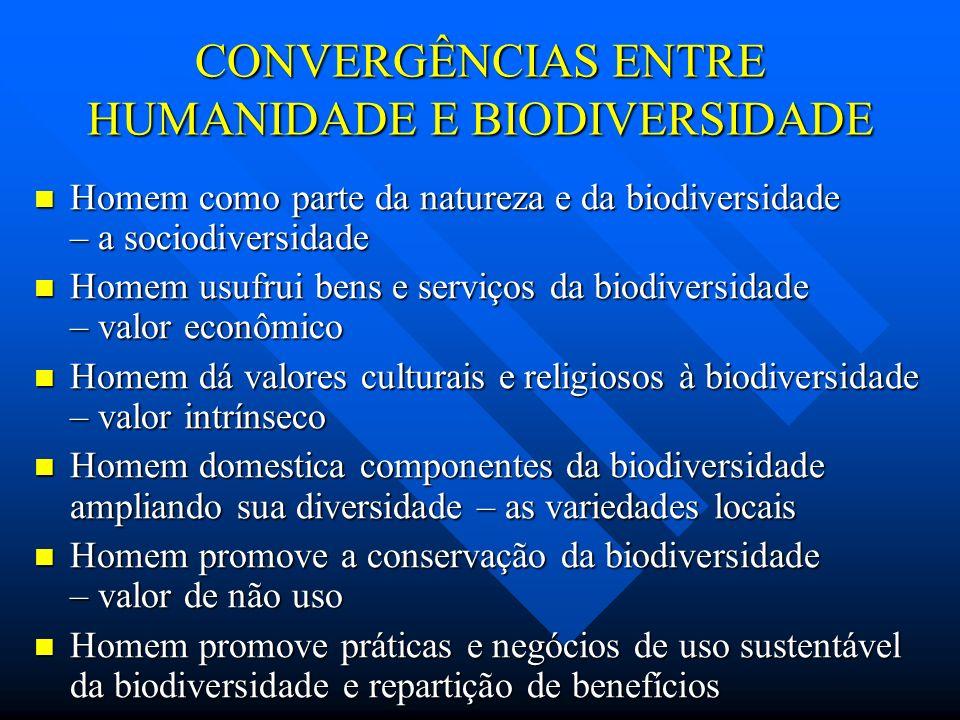 CONVERGÊNCIAS ENTRE HUMANIDADE E BIODIVERSIDADE Homem como parte da natureza e da biodiversidade – a sociodiversidade Homem como parte da natureza e d