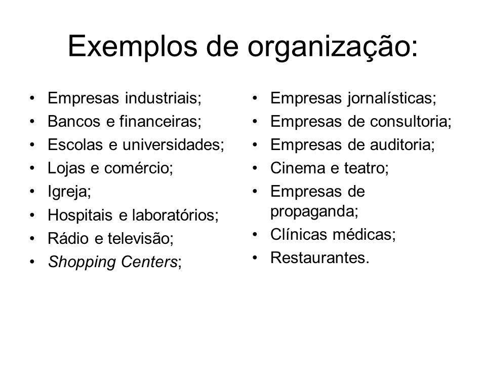 Exemplos de organização: Empresas industriais; Bancos e financeiras; Escolas e universidades; Lojas e comércio; Igreja; Hospitais e laboratórios; Rádi