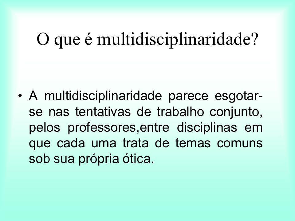 O que é multidisciplinaridade.