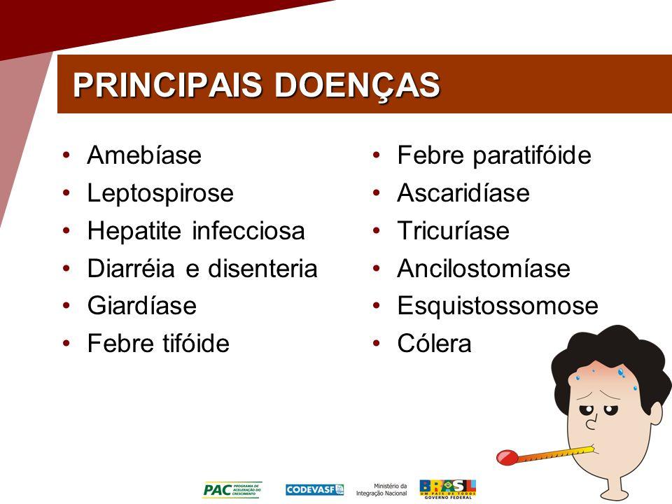PRINCIPAIS DOENÇAS Amebíase Leptospirose Hepatite infecciosa Diarréia e disenteria Giardíase Febre tifóide Febre paratifóide Ascaridíase Tricuríase An
