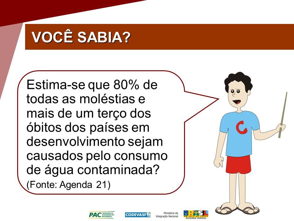 Estima-se que 80% de todas as moléstias e mais de um terço dos óbitos dos países em desenvolvimento sejam causados pelo consumo de água contaminada.