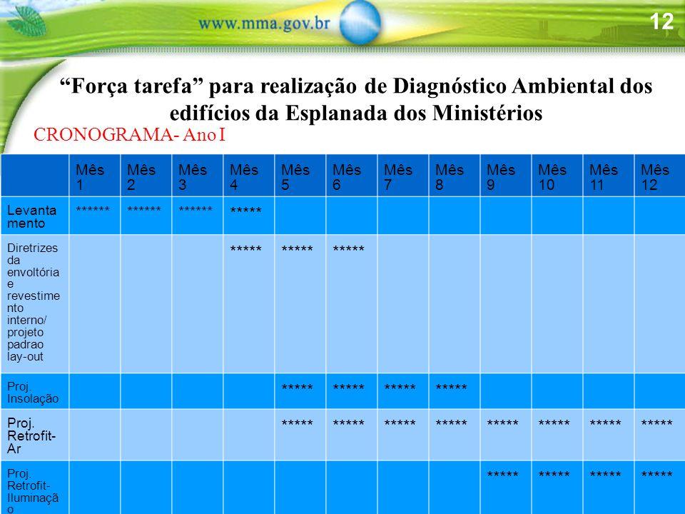 12 Força tarefa para realização de Diagnóstico Ambiental dos edifícios da Esplanada dos Ministérios CRONOGRAMA- Ano I Mês 1 Mês 2 Mês 3 Mês 4 Mês 5 Mê