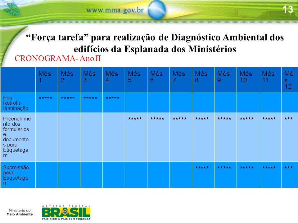 13 Força tarefa para realização de Diagnóstico Ambiental dos edifícios da Esplanada dos Ministérios CRONOGRAMA- Ano II Mês 1 Mês 2 Mês 3 Mês 4 Mês 5 M