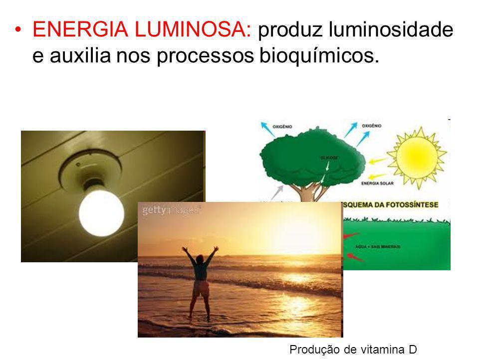 ENERGIA LUMINOSA: produz luminosidade e auxilia nos processos bioquímicos. Produção de vitamina D