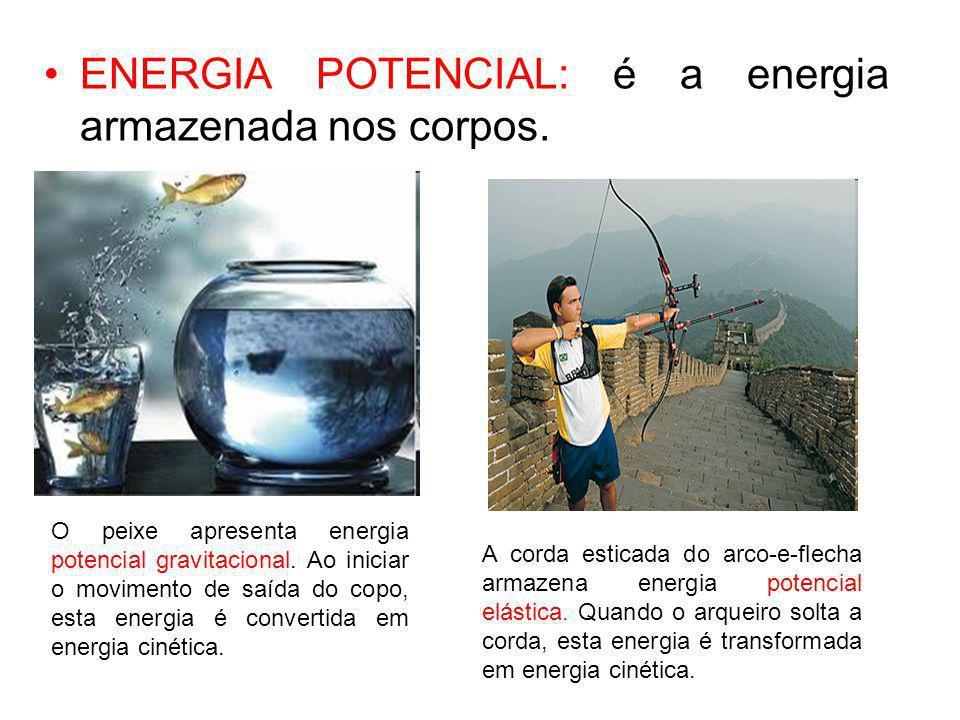 ENERGIA POTENCIAL: é a energia armazenada nos corpos. O peixe apresenta energia potencial gravitacional. Ao iniciar o movimento de saída do copo, esta