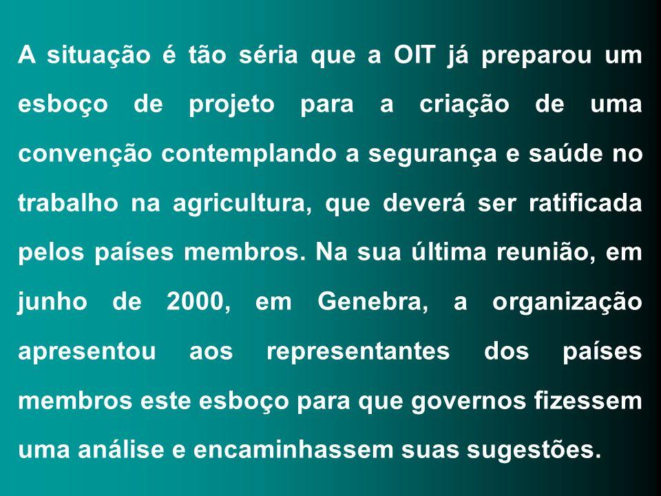 A situação é tão séria que a OIT já preparou um esboço de projeto para a criação de uma convenção contemplando a segurança e saúde no trabalho na agri