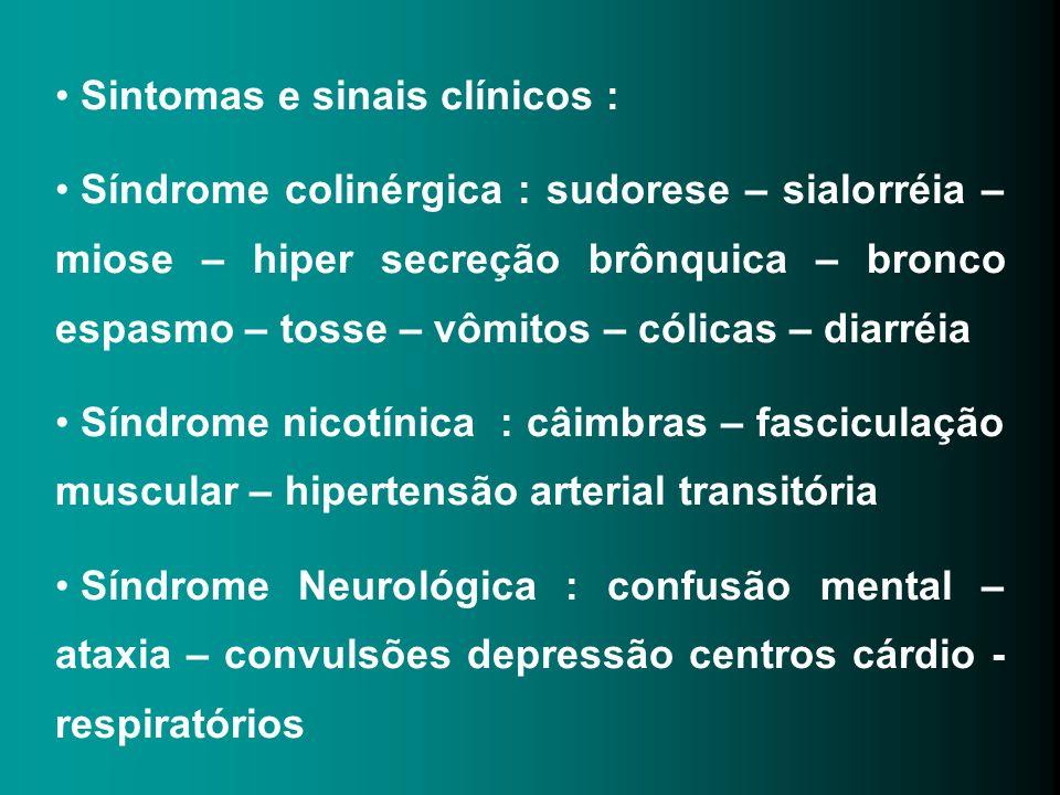 Sintomas e sinais clínicos : Síndrome colinérgica : sudorese – sialorréia – miose – hiper secreção brônquica – bronco espasmo – tosse – vômitos – cóli