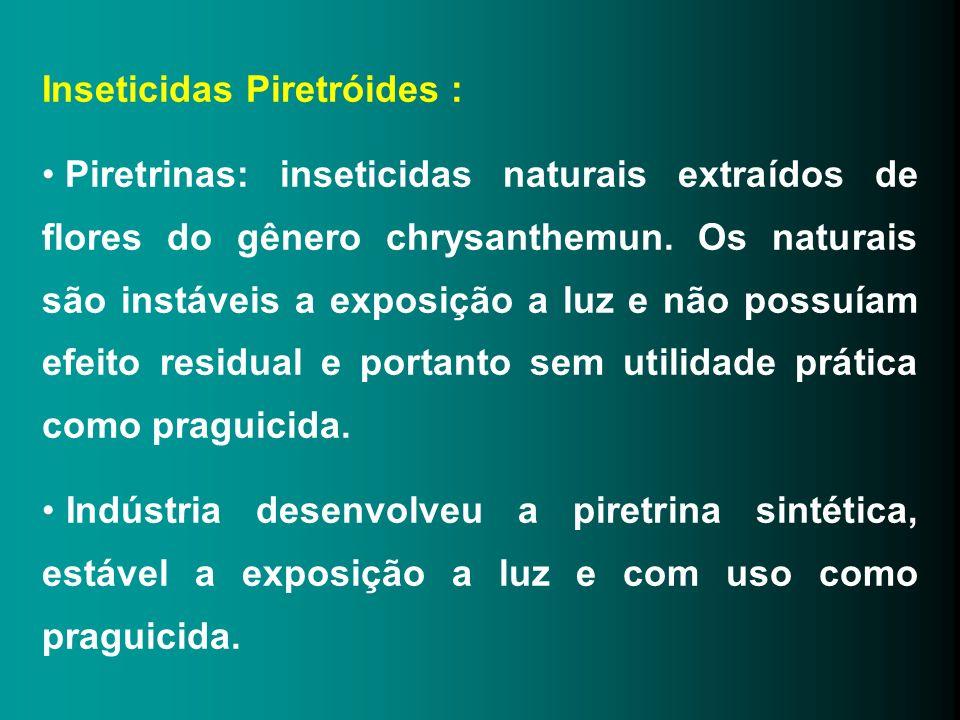 Inseticidas Piretróides : Piretrinas: inseticidas naturais extraídos de flores do gênero chrysanthemun. Os naturais são instáveis a exposição a luz e