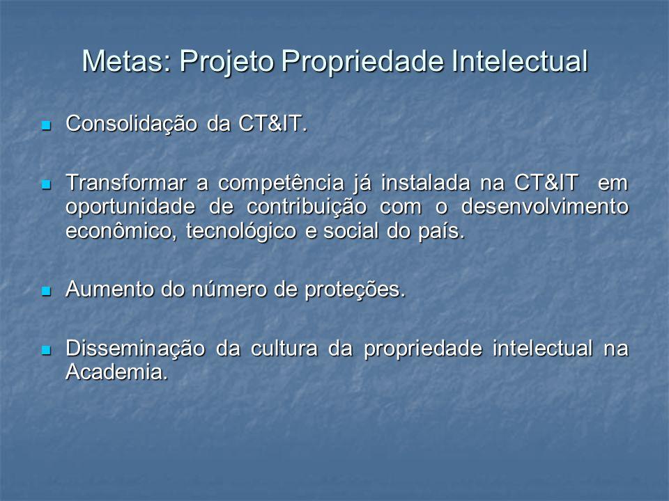 Metas: Projeto Propriedade Intelectual Consolidação da CT&IT. Consolidação da CT&IT. Transformar a competência já instalada na CT&IT em oportunidade d