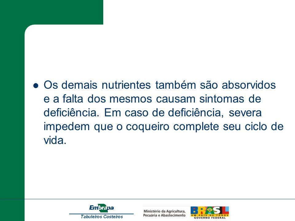 Os demais nutrientes também são absorvidos e a falta dos mesmos causam sintomas de deficiência. Em caso de deficiência, severa impedem que o coqueiro