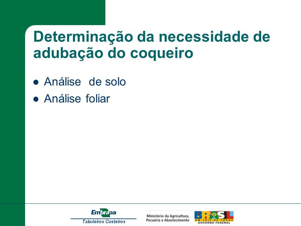 Determinação da necessidade de adubação do coqueiro Análise de solo Análise foliar