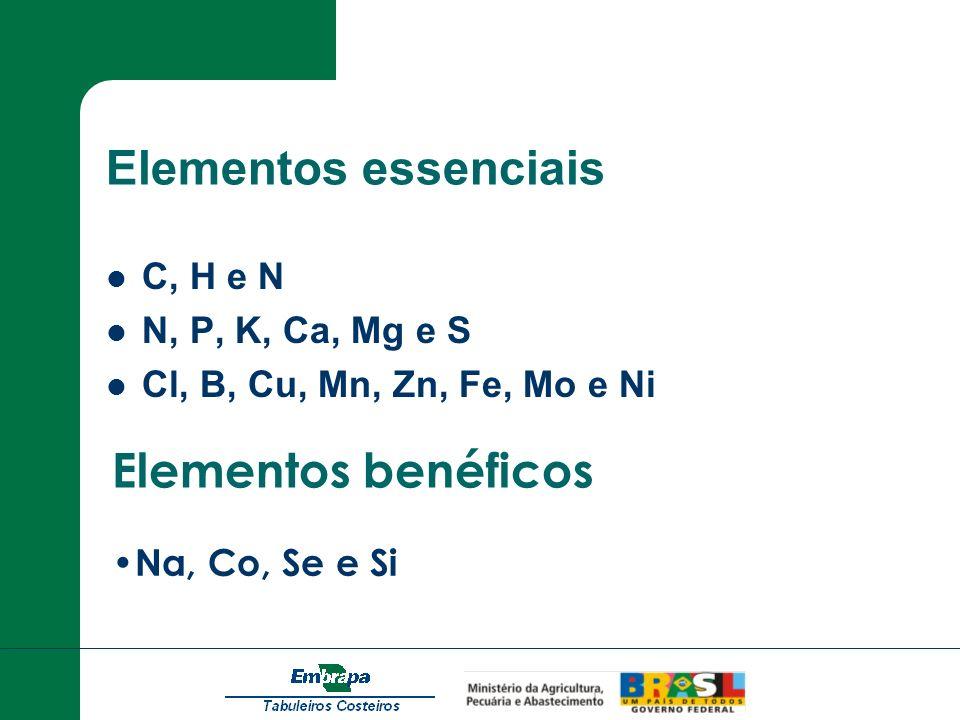 Elementos essenciais C, H e N N, P, K, Ca, Mg e S Cl, B, Cu, Mn, Zn, Fe, Mo e Ni Elementos benéficos Na, Co, Se e Si