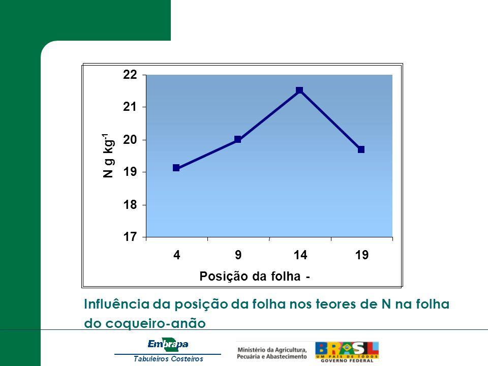 Influência da posição da folha nos teores de N na folha do coqueiro-anão 17 18 19 20 21 22 491419 Posição da folha - N g kg