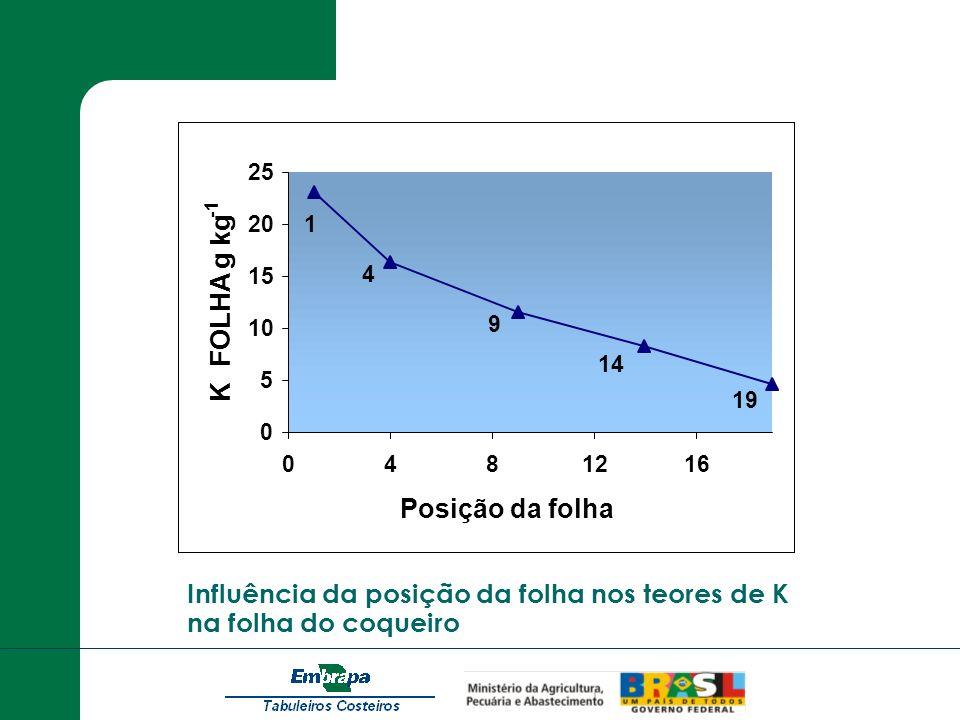 Influência da posição da folha nos teores de K na folha do coqueiro 0 5 10 15 20 25 0481216 Posição da folha K FOLHA g kg 14 19 9 4 1