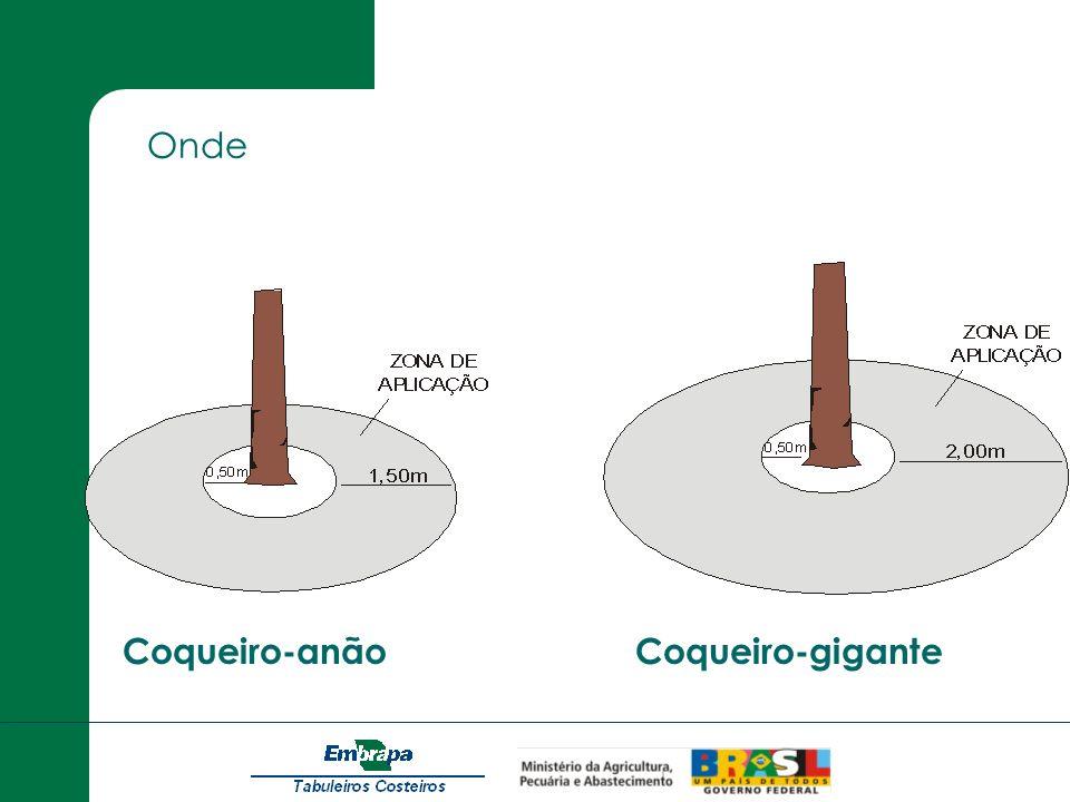 Coqueiro-anãoCoqueiro-gigante Onde