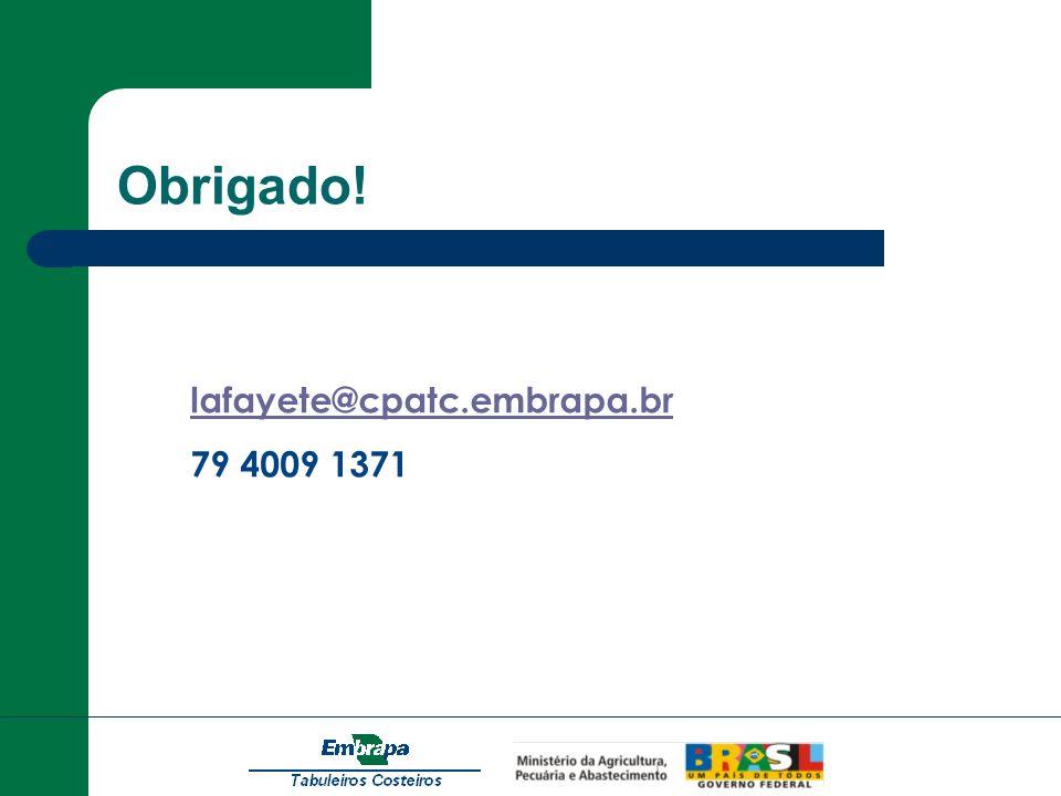 Obrigado! lafayete@cpatc.embrapa.br 79 4009 1371