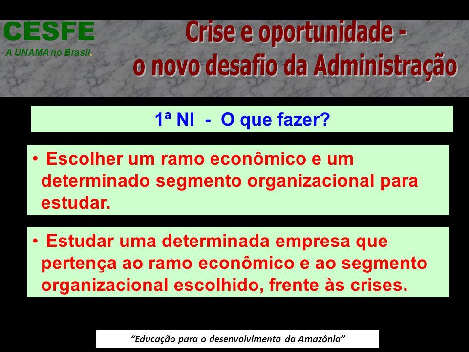 Educação para o desenvolvimento da Amazônia 1ª NI - O que fazer? CESFE A UNAMA no Brasil. Escolher um ramo econômico e um determinado segmento organiz
