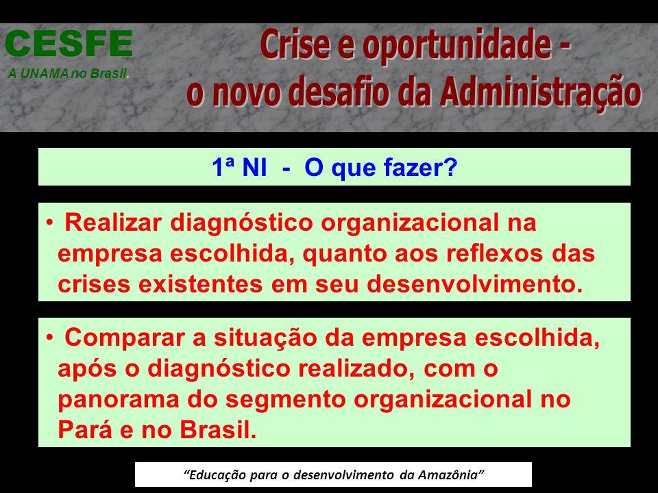 Educação para o desenvolvimento da Amazônia 1ª NI - O que fazer? CESFE A UNAMA no Brasil. Realizar diagnóstico organizacional na empresa escolhida, qu