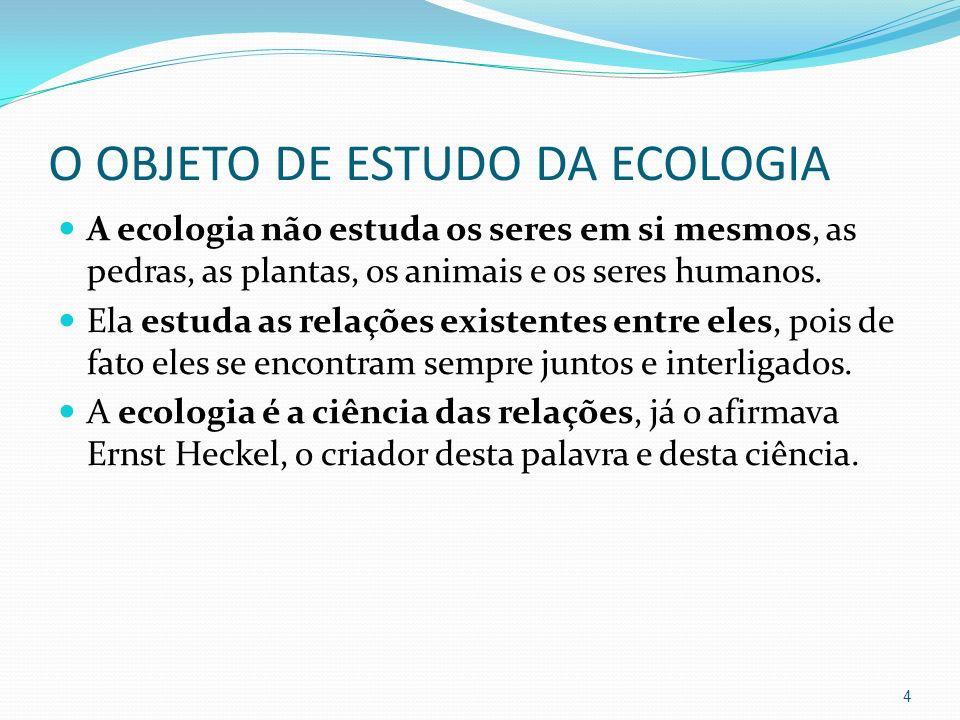 O OBJETO DE ESTUDO DA ECOLOGIA A ecologia não estuda os seres em si mesmos, as pedras, as plantas, os animais e os seres humanos. Ela estuda as relaçõ