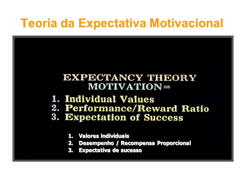 1. Valores individuais 2. Desempenho / Recompensa Proporcional 3. Expectativa de sucesso