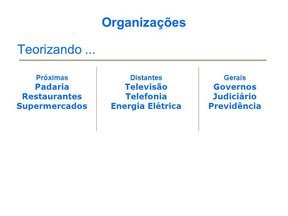 Organizações Teorizando...