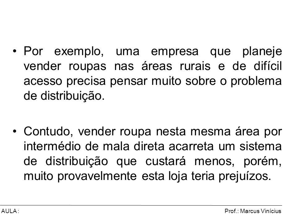 Prof.: Marcus ViníciusAULA : Por exemplo, uma empresa que planeje vender roupas nas áreas rurais e de difícil acesso precisa pensar muito sobre o prob