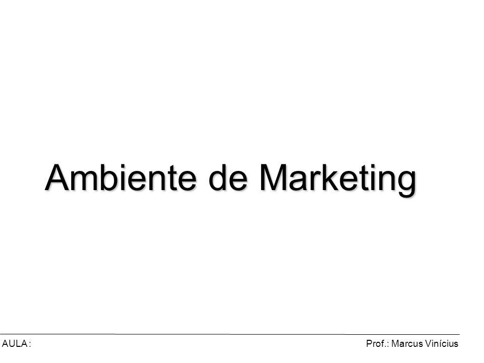 Prof.: Marcus ViníciusAULA : Ambiente de Marketing