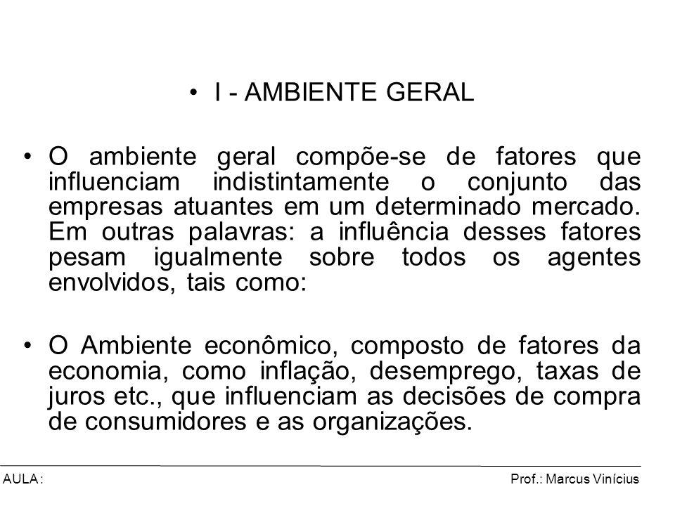 Prof.: Marcus ViníciusAULA : I - AMBIENTE GERAL O ambiente geral compõe-se de fatores que influenciam indistintamente o conjunto das empresas atuantes