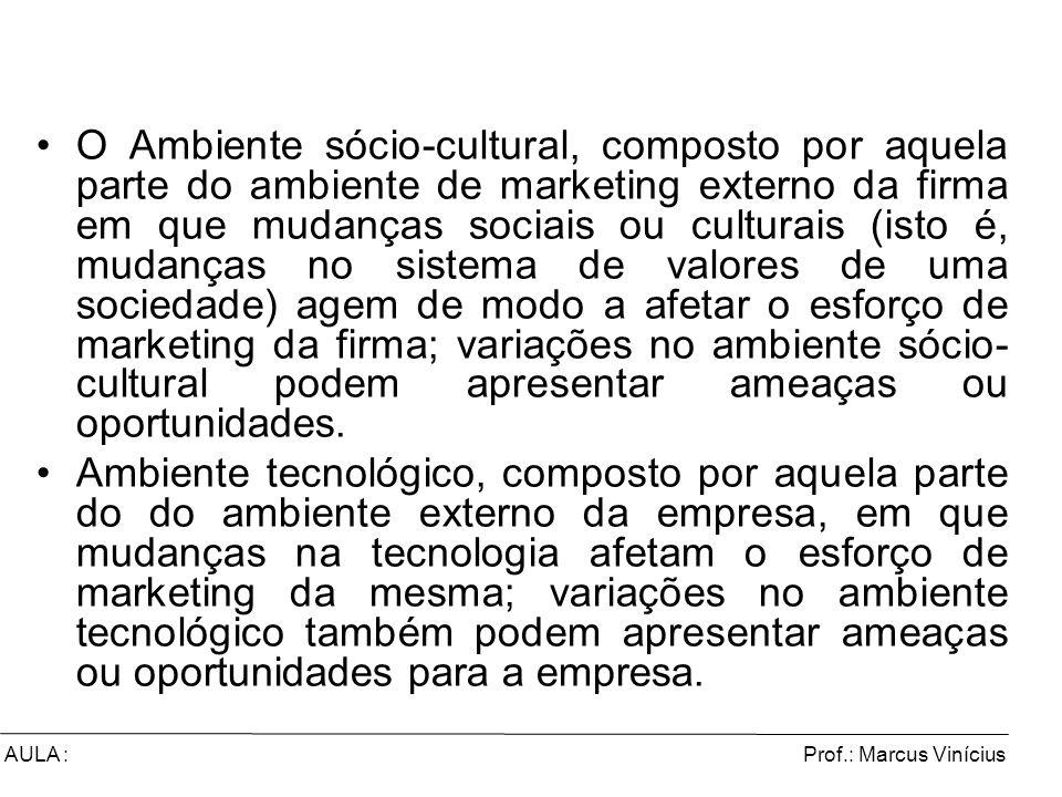 Prof.: Marcus ViníciusAULA : O Ambiente sócio-cultural, composto por aquela parte do ambiente de marketing externo da firma em que mudanças sociais ou