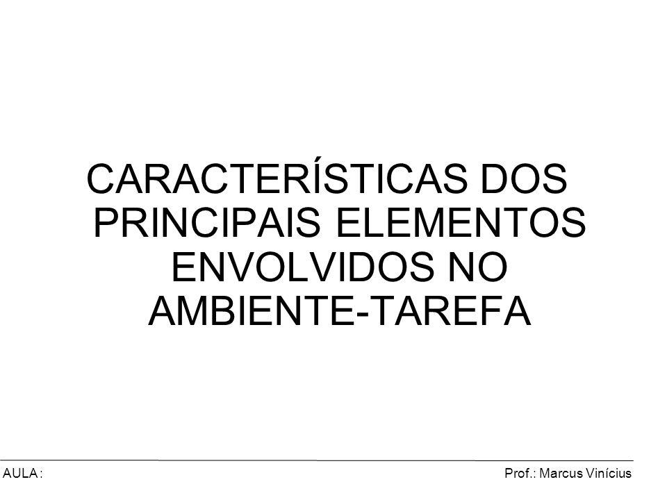 Prof.: Marcus ViníciusAULA : CARACTERÍSTICAS DOS PRINCIPAIS ELEMENTOS ENVOLVIDOS NO AMBIENTE-TAREFA